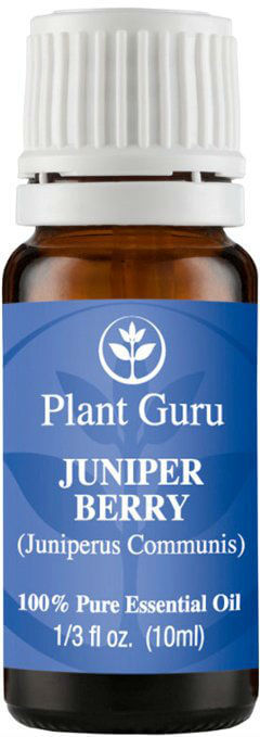 Plant Guru Juniper Berry