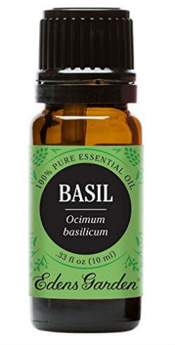Pure Health HQ_Best Essential Oils for Headaches and Migraines - Edens Garden Basil Therapeutic Grade