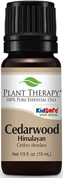 Pure Health HQ - Best Essential Oils for Hair - Plant Therapy Cedarwood Himalayan Essential Oil