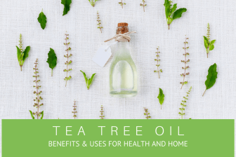 Guide to Tea Tree Oil Benefits & Uses for Health and Home - Pure Health HQ